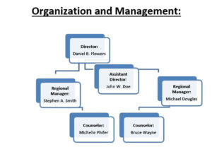 A generic organizational chart displaying three levels of a fictional organization